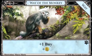 Way of the Monkey.jpg