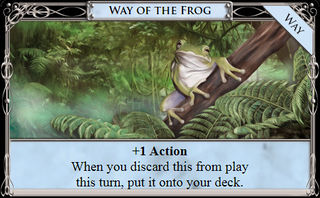 Way of the FrogDigital.jpg