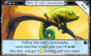 Way of the Chameleon.jpg