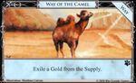 Way of the Camel