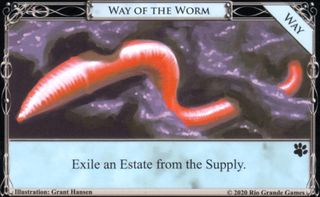Way of the Worm.jpg